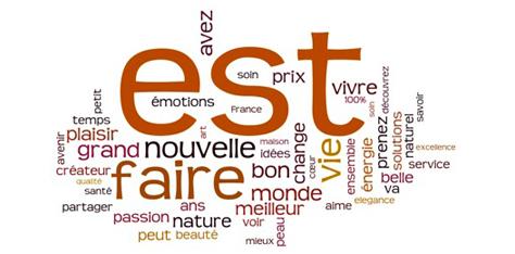 Quels seront les mots utiles pour déclencher le succès en 2013 ?
