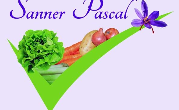Logo Sanner P